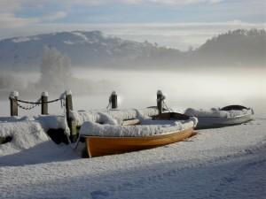 No boats today!